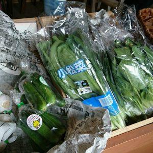 organic-y様お野菜