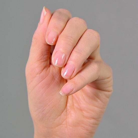 550神戸の雫hand1